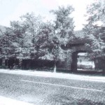 1950-64